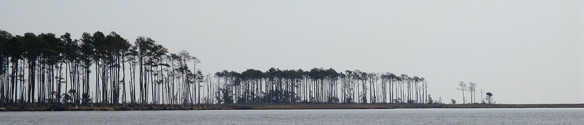 12-2-6 Pamlico Sound to Neuse