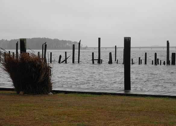 Belhaven Marina 2